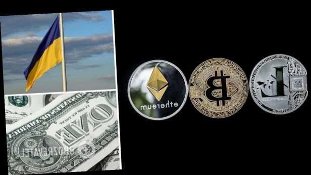 Обошли Штаты и РФ. Украинцы оказались первыми в мире по владению криптовалютой