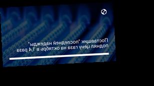 """Поставщик """"последней надежды"""" поднял цену газа на октябрь в 1,4 раза"""