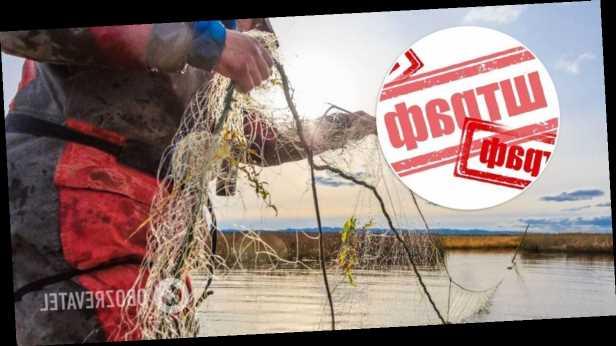 В Украине в сотни раз повысили штрафы за браконьерский вылов рыбы
