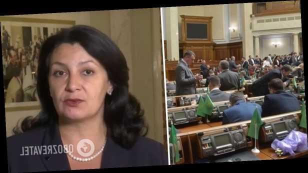 Власть занимается фальсификацией результатов скандального голосования за закон об олигархах – Климпуш-Цинцадзе