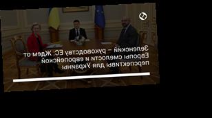 Зеленский – руководству ЕС: Ждем от Европы смелости и европейской перспективы для Украины