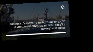 """""""Россия хочет уйти от ответа"""". Украина в Гааге начала выступать по делу о захвате моряков"""